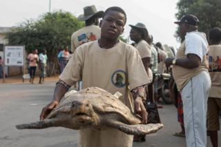 A conservation activist holds a bucket containing baby sea turtles during a ceremony in Grand-Popo on January 8, 2018 for their release into the ocean, to mark the 'National Day of Sea Turtles'.